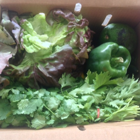 open box of greens and bell peppers