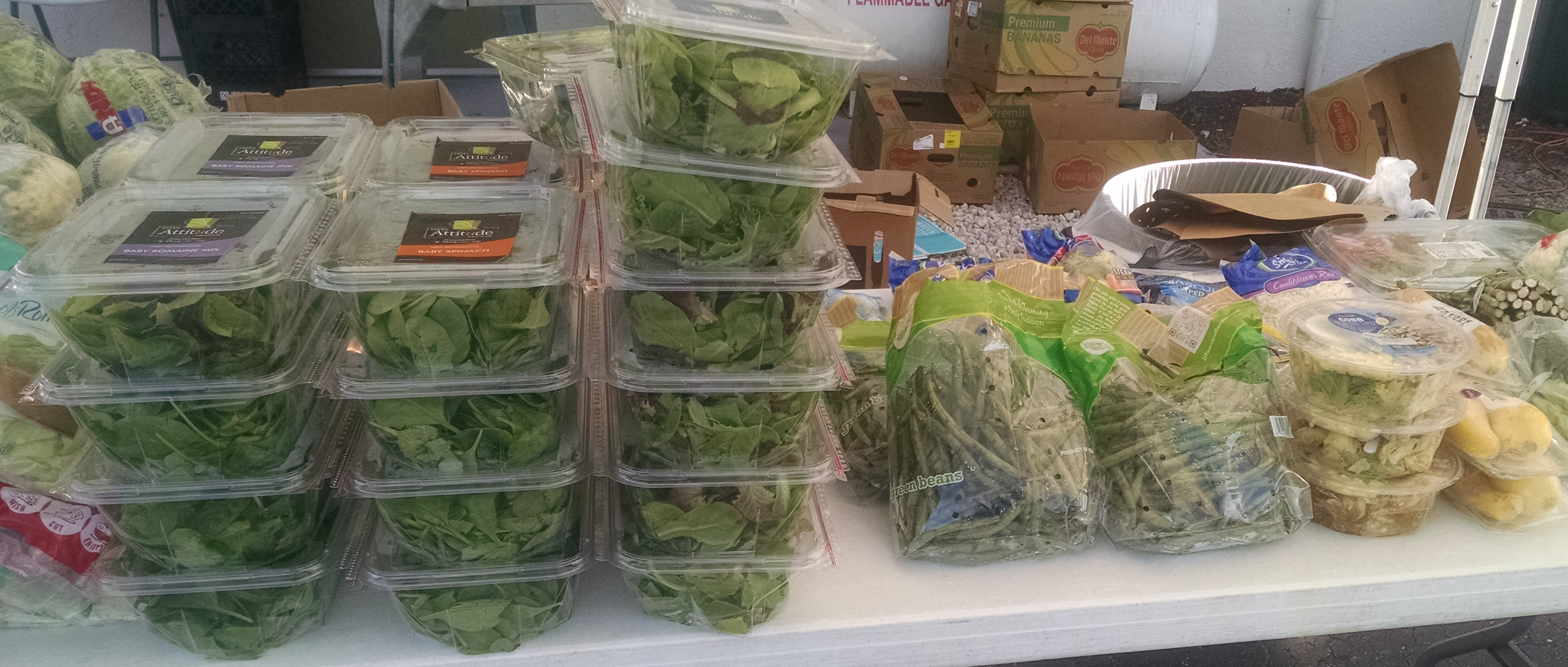 photo of lettuce, spinach and other fresh vegetables all packaged in plastic